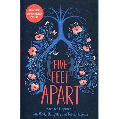 Five Feet Apart by Rachael Lippincott.