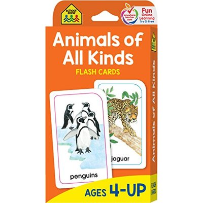 Flash Cards – Animals of All Kinds